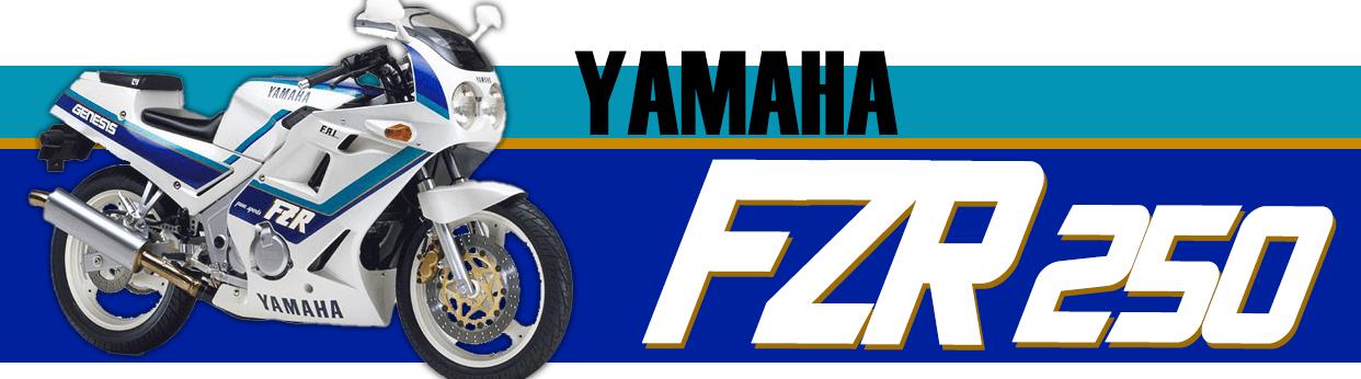 mtgarage 旧車パーツ FZR250